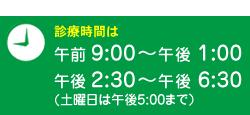 診療時間は 午前9:00〜午後1:00 午後2:30〜午後6:30(土曜日は午後5:00まで)